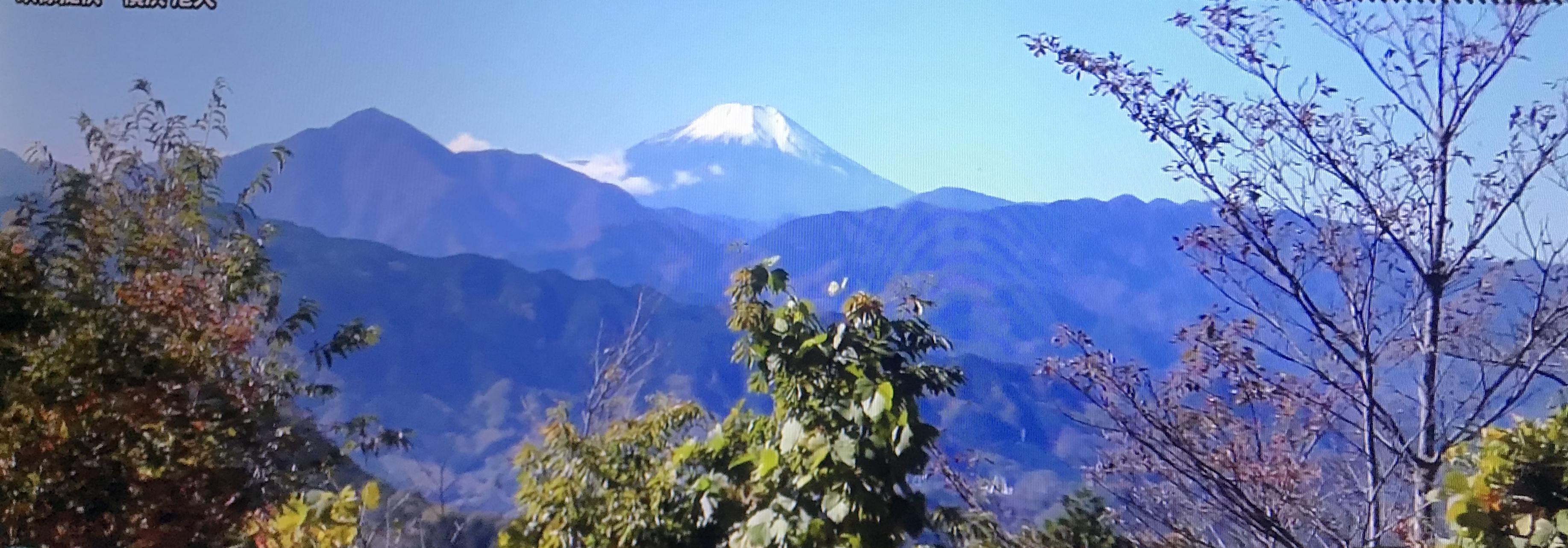 高尾山は40分歩いて頂上へ
